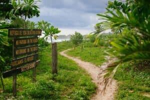Olas Verdes Hotel beach access