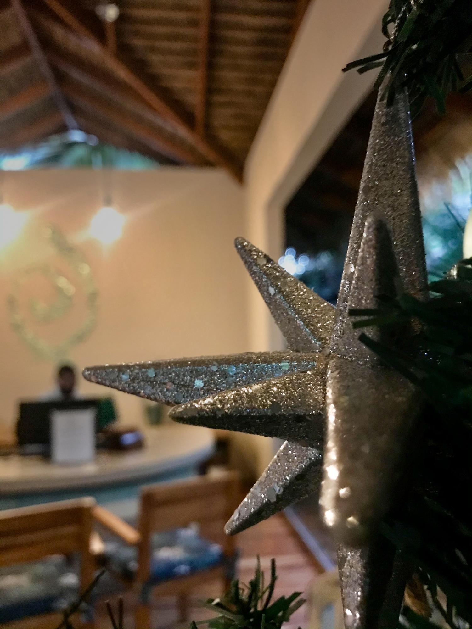 Christmas deco at Olas Verdes Hotel