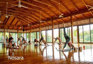 Nosara es la mecca del yoga en Costa Rica
